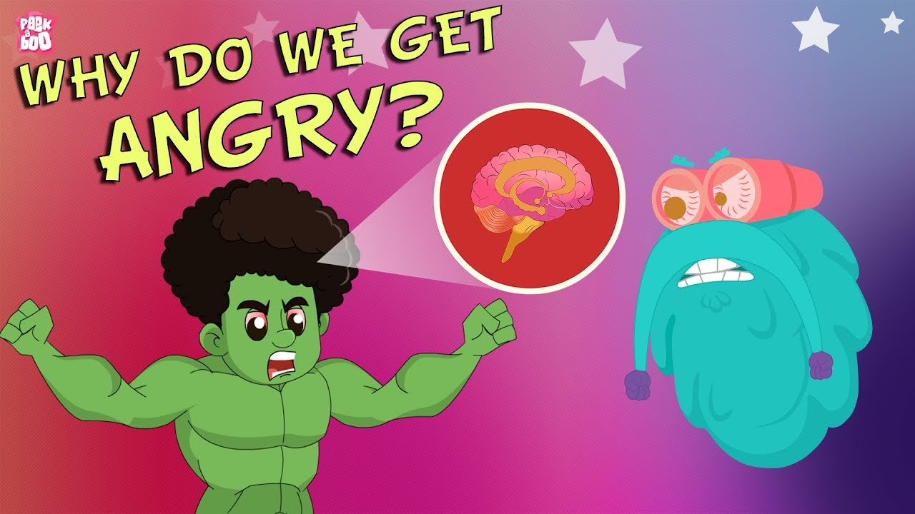 Why Do We Get Angry? | The Dr. Binocs Show | Best Learning ...