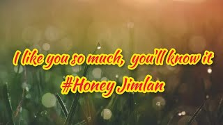 I Like You So Much, You'll Know It[ Lyrics ] Honey Jemlan | I like your eyes, you look away when you