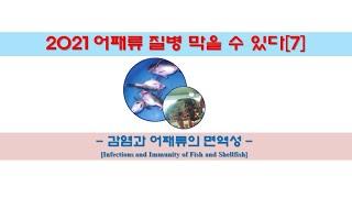 어패류 질병 막을 수 있다[7] - 감염과 어패류의 면…