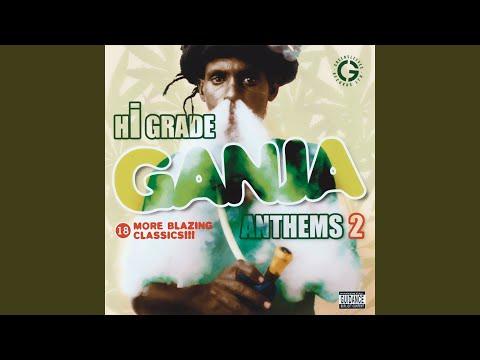 Hi Grade Ganja Anthems Vol. 2 (various artists)