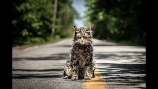 Pet Sematary   Teaser Trailer HD   Paramount Pictures 2019