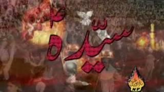 Shahid Baltistani 2010 noha Bas Bibi(as) razi ho jayen