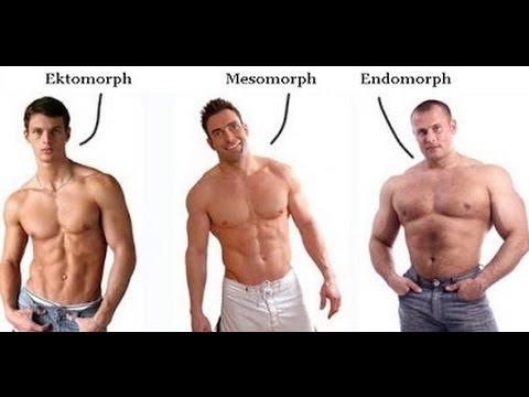 اعرف نوع جسمك Ectomorph أو Mesomorph أو Endomorph