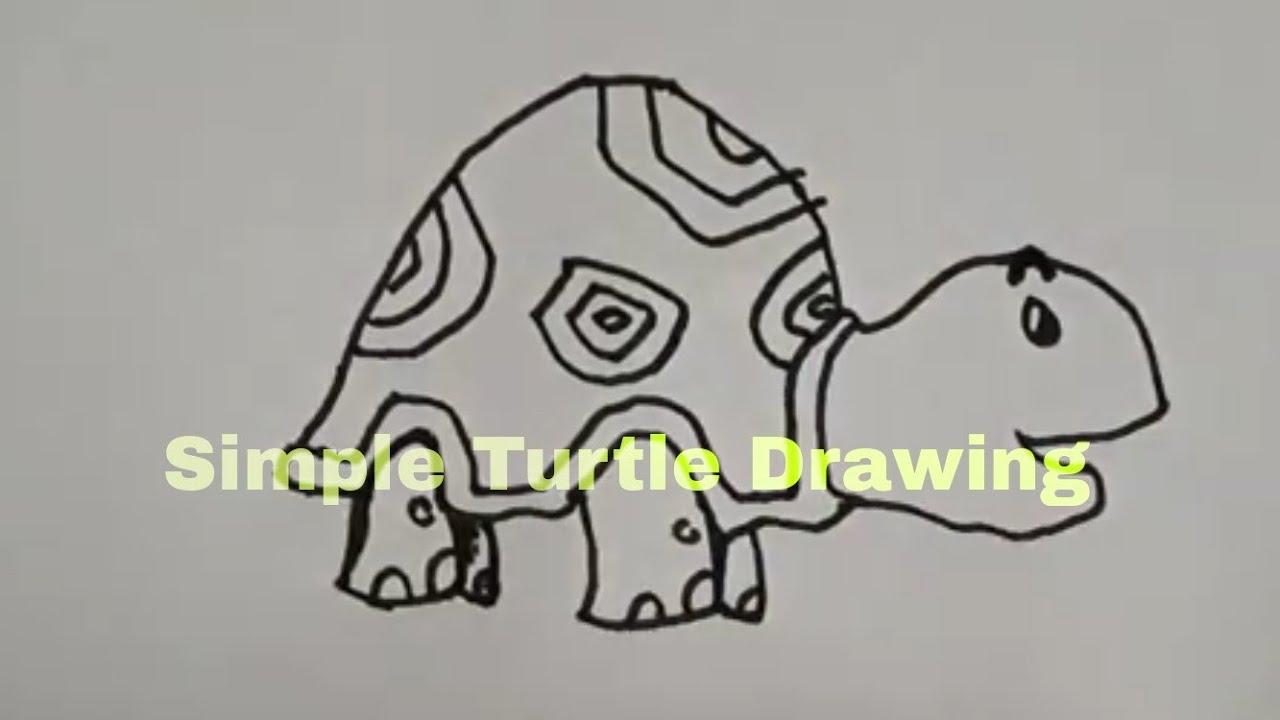 Basit Kaplumbağa çizimi Simple Turtle Drawing Youtube
