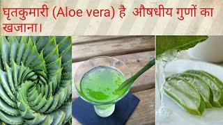 artrózis aloe vera kezelése