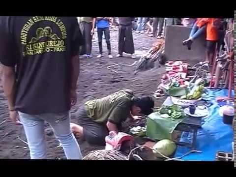 Turonggo Wahyu Kisindu Extreme art from Indonesia live perform @Sekarpuro, Malang