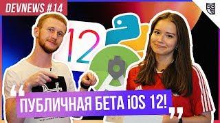 iOS 12, Android Studio 3.2, Python 3.7, Дрон Трансформер