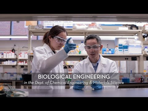 CEMS UMN Biological Engineering