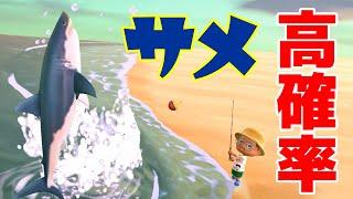 【カズ森】 この島すごっ!サメ大量FISHチャレンジしてみた!あつまれどうぶつの森 PART73