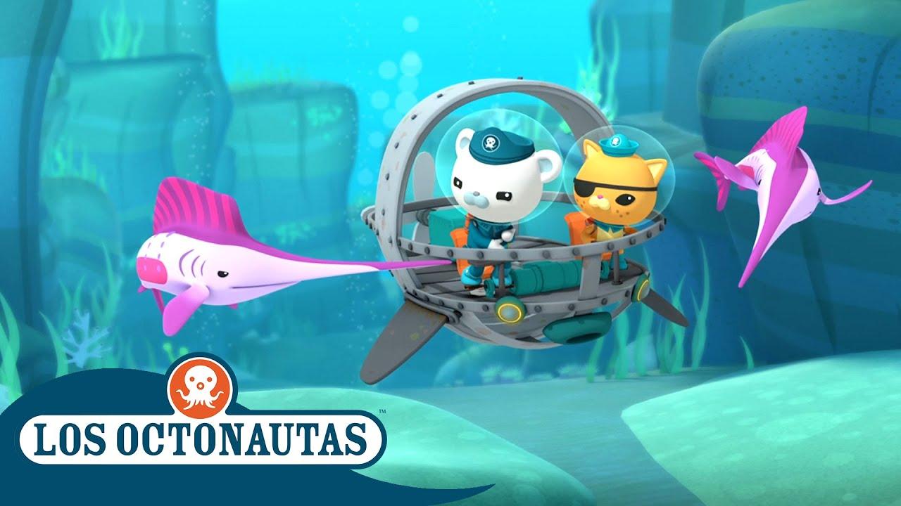 Los Octonautas Oficial En Español - Navegando con los veloces peces vela   Episodios Completos