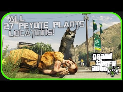 GTA V - All 27 Peyote Plant Locations! (GTA V Next Gen) (PS4)