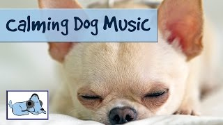Calming Dog Music for Your Stressed/Anxious Pet. Relax your Dog with Music.