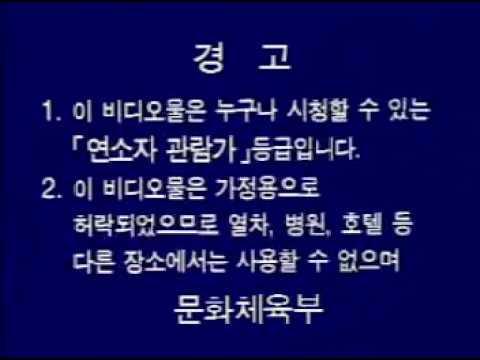 연소자 관람가용 문화체육부 경고 (VCD)
