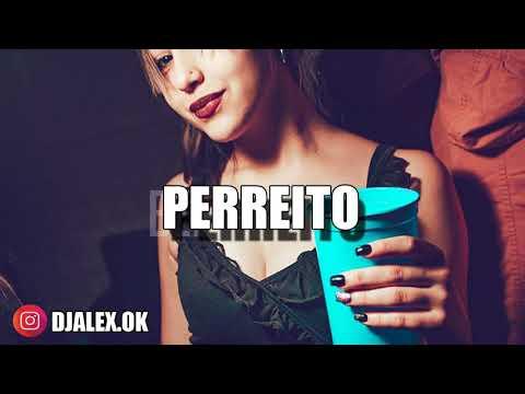 PERREITO REMIX - MARIAH ✘ DJ ALEX [FIESTERO REMIX]