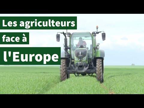 France : les agriculteurs à l'épreuve de l'Europe | AFP Reportage