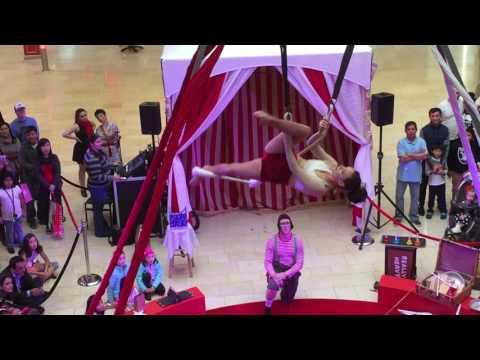 Nice Christmas Circus Act