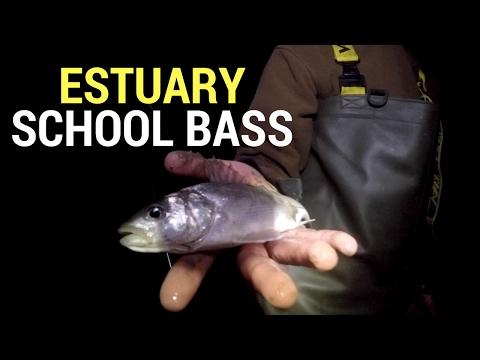 Fishing Brothers - Estuary Bass
