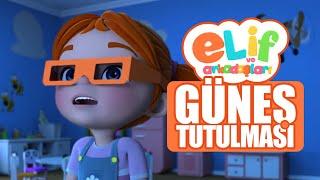 Elif ve Arkadaşları  - Güneş Tutulması - TRT Çocuk Çizgi Film