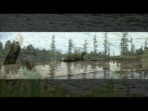 Ballard Wildlife Refuge Paducah, Kentucky (2 Min) HD