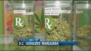 Recreational Pot Use Now Legal in Washington D.C.