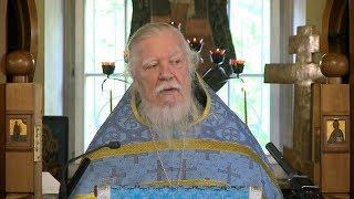 Протоиерей Димитрий Смирнов. Проповедь о милосердии на праздник Покрова Пресвятой Богородицы
