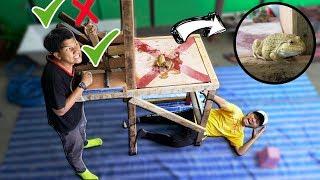 กล้าเล่นไหม! เกมส์คันโยกกับสัตว์ร้ายมรณะ