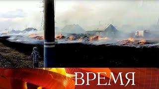 Общая площадь природных пожаров в разных регионах России превысила 20 тысяч гектаров.