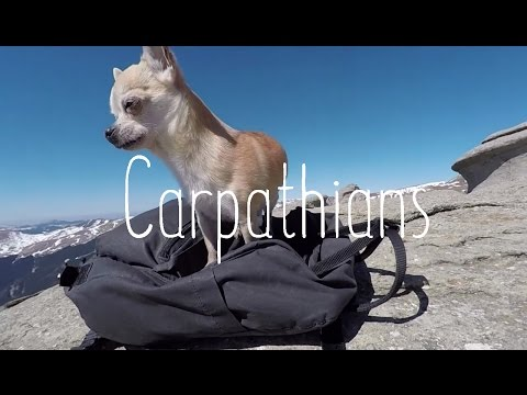 Relaxing days in stunning Carpathian mountains and meeting the Sphinx