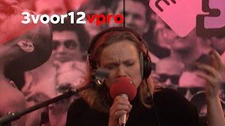 Ane Brun & Zapp 4 - Live bij 3voor12 Radio