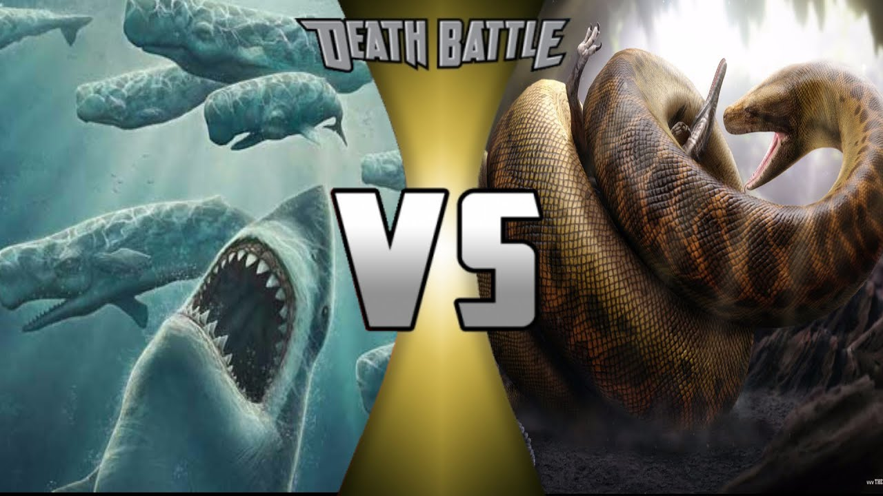 Megalodon vs Titanoboa: Who Would Win? (S4) - YouTube