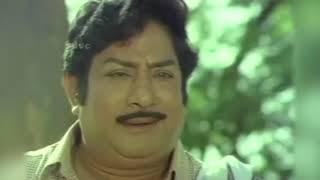 பூங்காற்று திரும்புமா | Poongatru Thirumbuma | Malaysia Vasudevan, S. Janaki | Tamil Hit Song HD