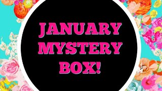 January Mystery Box parTAY!! 🎊 🎉 thumbnail