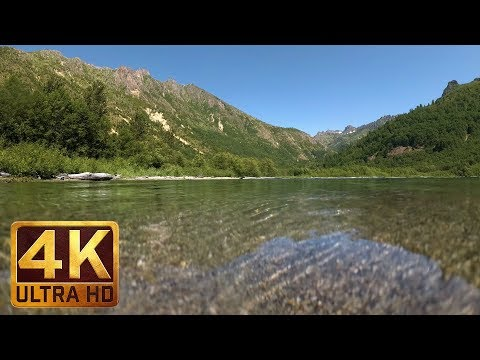4K (Ultra HD) Underwater Nature Scene | Coldwater Lake, Mt. St. Helens Area - Trailer