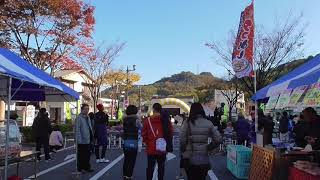 いちょう祭り 笠岡.