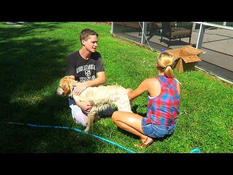 Super Cooper Sunday #30: BATH TIME!