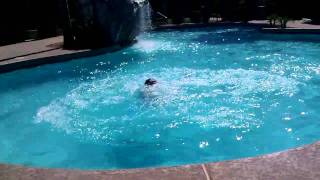 Kohler swimming and hurting :) Thumbnail