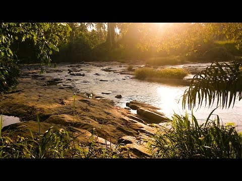 Natur Sounds for Relaxing and Meditation - Beautiful Riverview at Sunset on Sri Lanka