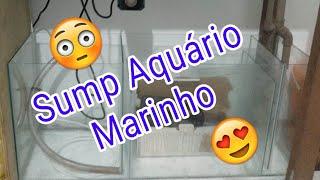 Sump para aquário marinho
