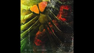 Without Me (feat. Juice WRLD) (Clean Version) (Audio) - Halsey