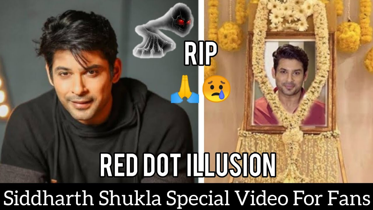 Tribute To Siddharth Shukla|Best Optical illusion Trick|shehnaaz gill news today |Red Dot illusion 🙏