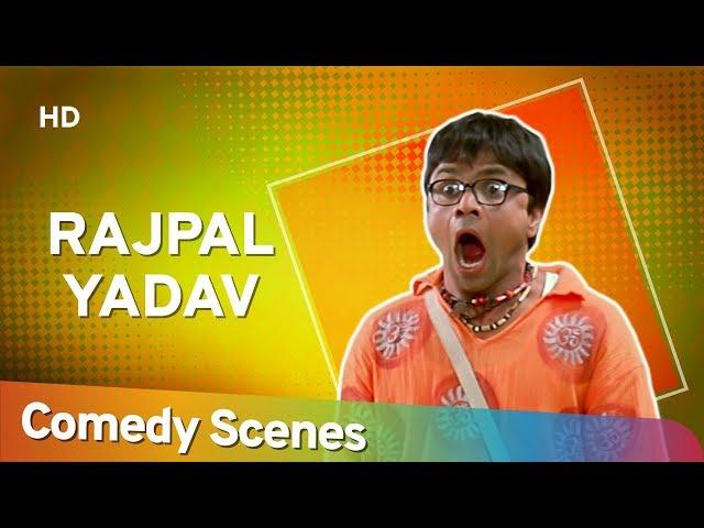 Rajpal Yadav Comedy - Superhit Comedy Scenes - राजपाल यादव हिट्स कॉमेडी - Shemaroo Bollywood Comedy
