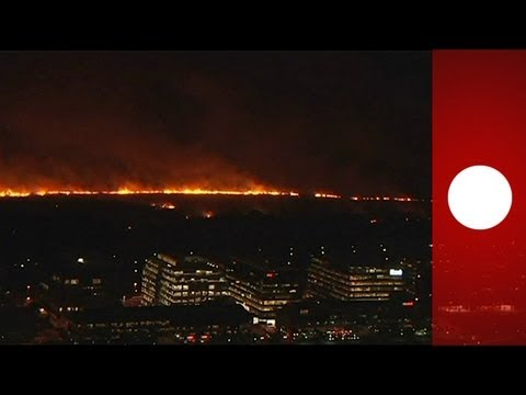 Buenos Aires ecological 'lung' is partly destroyed by fire