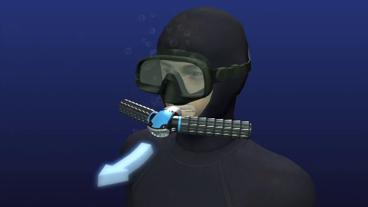 Remembering Bruce The Mechanical Shark From Jaws in addition Watch additionally Great White Shark Cage Diving also Valve parts additionally When Will Subnautica Be Released On Xbox One. on scuba tank