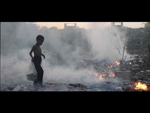 12th June: World Day Against Child Labour By UN   Video   Fact Frames