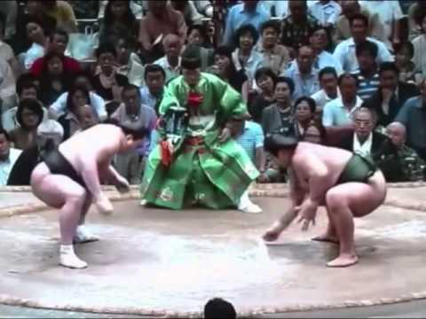 Sumo Knockouts Ever Mongolia ( Сумо)