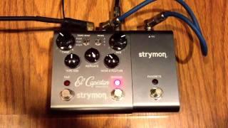 Strymon El Capistan Tape Delay