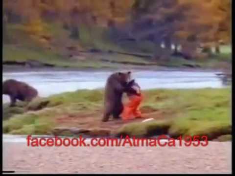 en korkunc ayı saldırısı