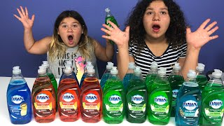 Don't Choose the Wrong Dish Soap Slime Challenge