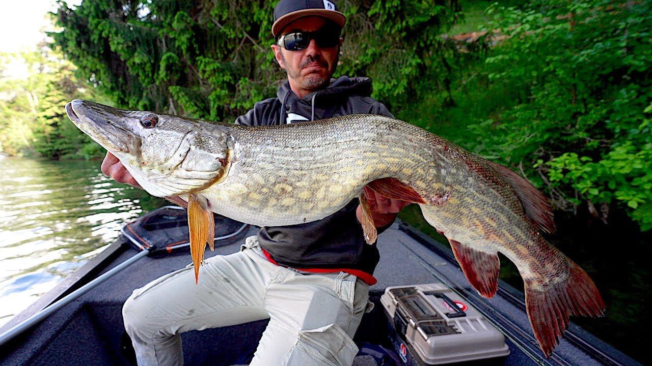 Pesca ai GROSSI LUCCI dell' ALTO ADIGE - Fischer Paradies Haidersee