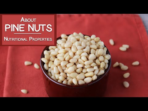 About Pine Nuts | Why Are They So Expensive?